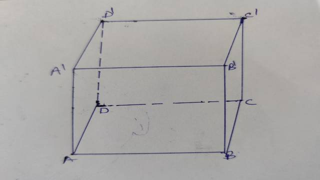 Surface Area of Cube and Cuboid
