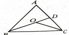Inequalities of triangle class 9