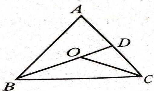Inequalities of triangle class 9