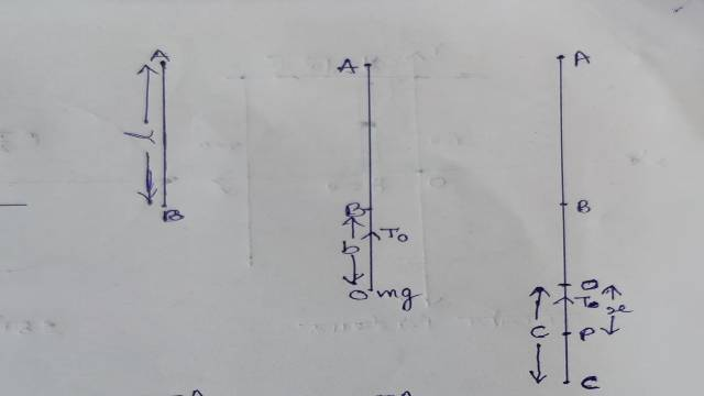 Motion in vertical elastic string